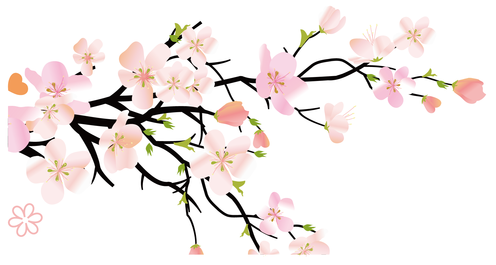 Hình ảnh hoa đào tách nền đẹp nhất 6