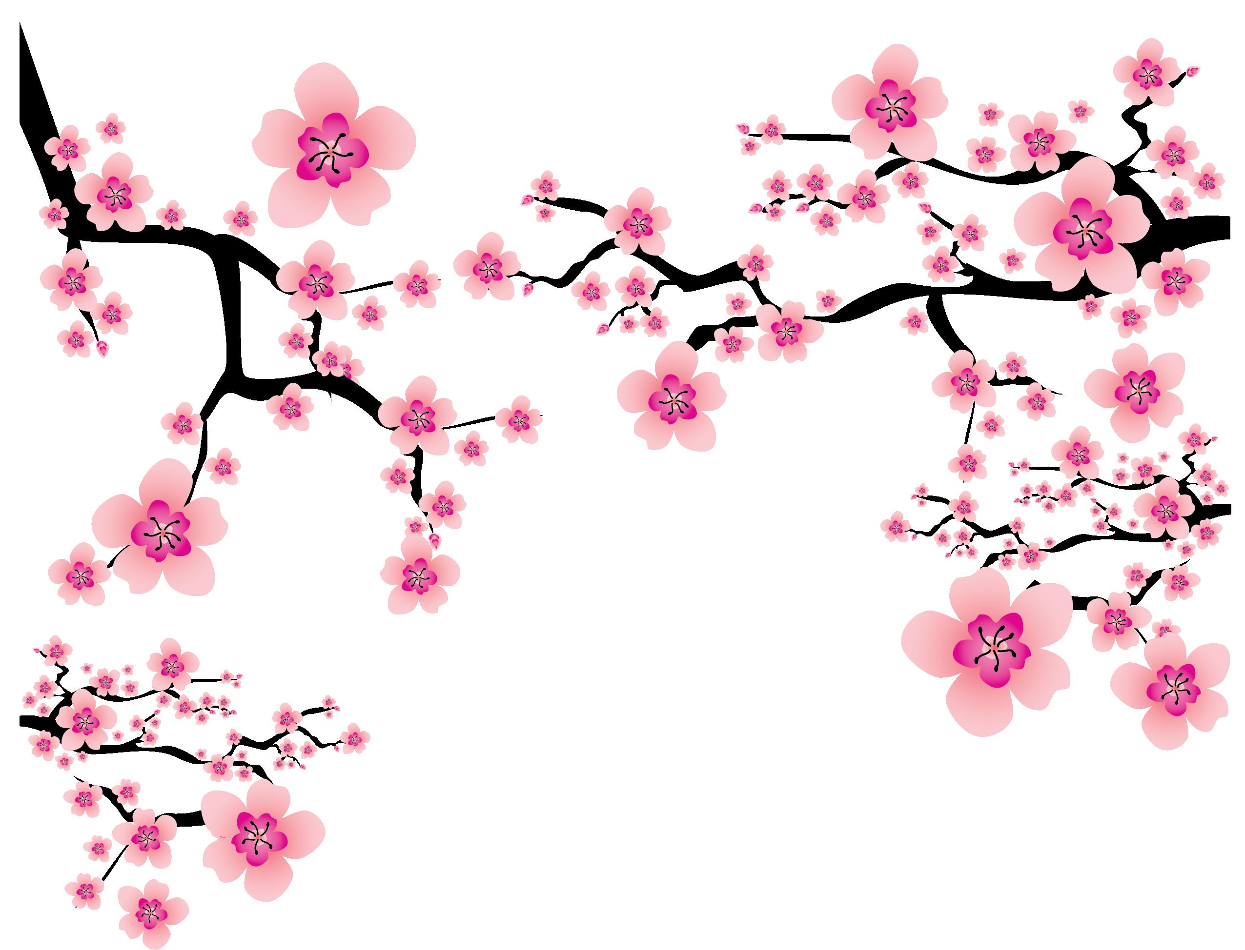 Hình ảnh hoa đào tách nền