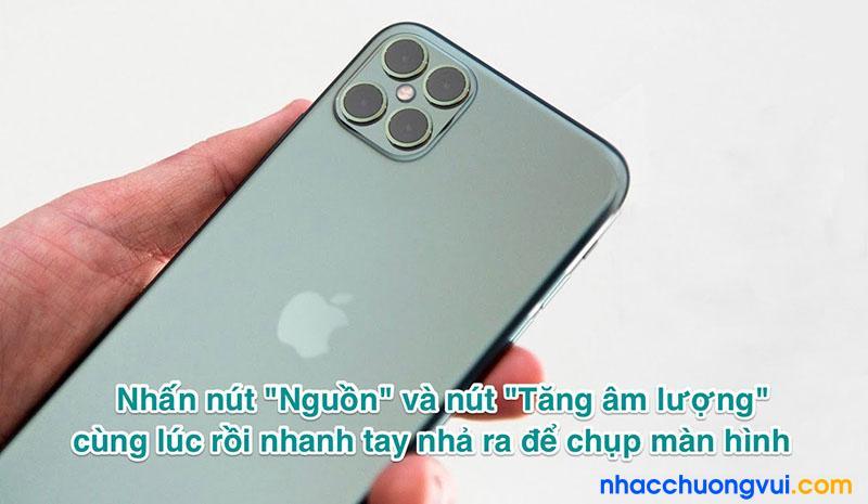 Cách chụp màn hình iPhone 12, iPhone 12 Pro max...